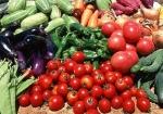 Ấn Độ: Đòi hỏi quyền an toàn thực phẩm